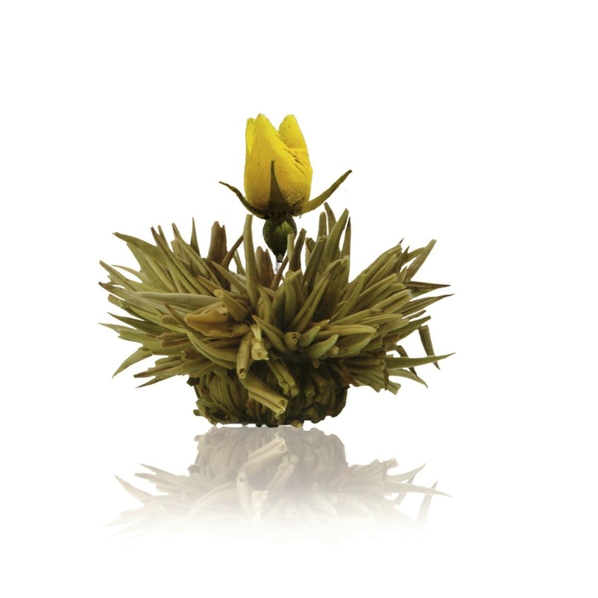 Floare de ceai alb si trandafir galben